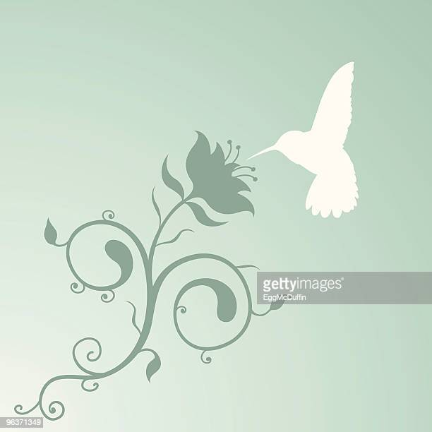 humming bird and a lovely filigree plant thing. - hummingbird stock illustrations, clip art, cartoons, & icons