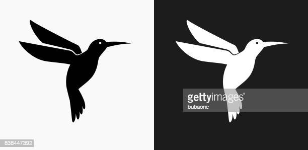 hummingbird icon on black and white vector backgrounds - hummingbird stock illustrations, clip art, cartoons, & icons
