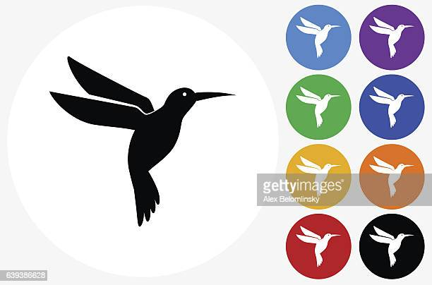 hummingbird icon on flat color circle buttons - hummingbird stock illustrations, clip art, cartoons, & icons