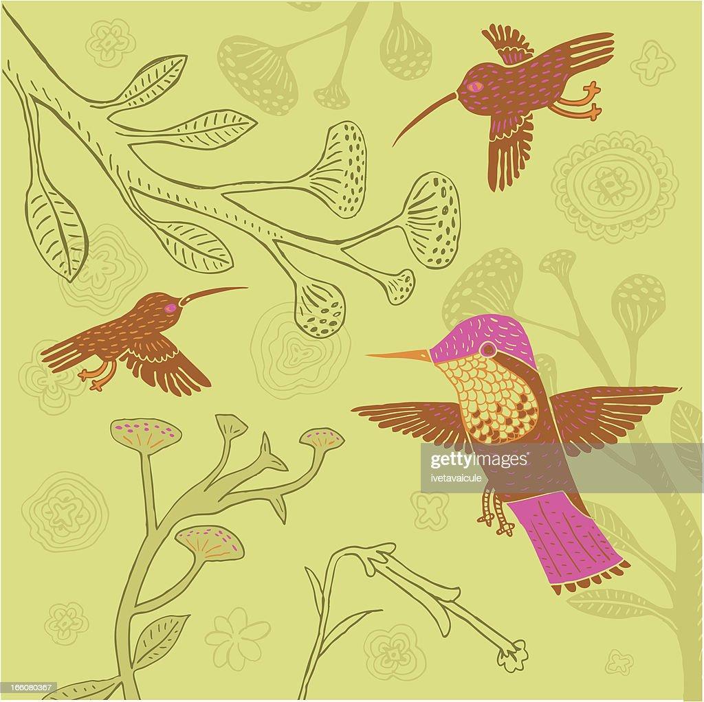 hummingbird vector art getty images