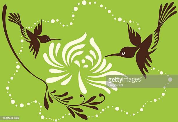 Hummingbirds &菊