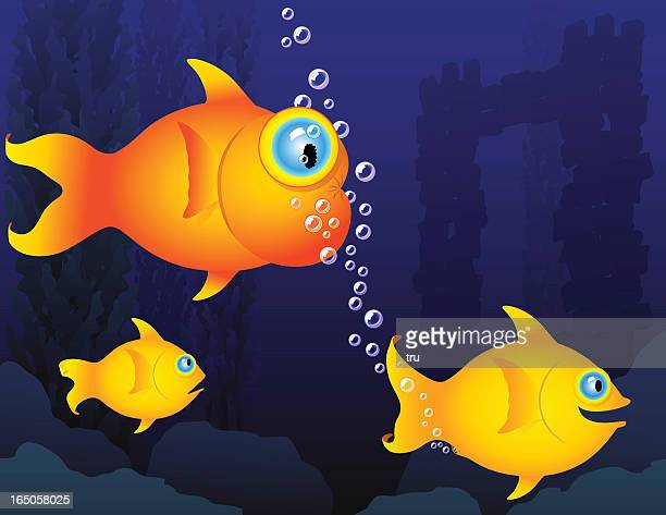 Humorous fish - gas bubbles
