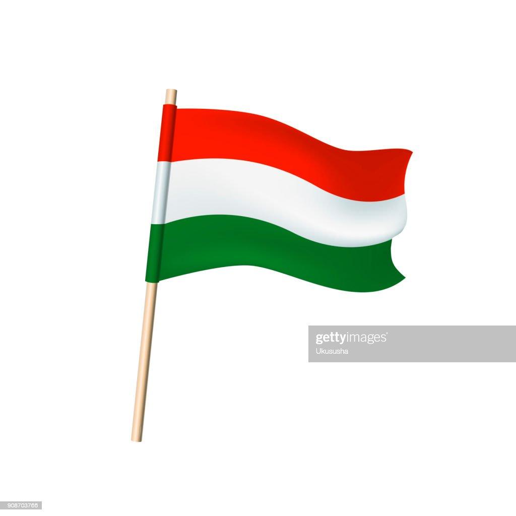Hungary flag on white background