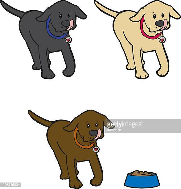 hungry lab puppy - dog eating stock illustrations, clip art, cartoons, & icons