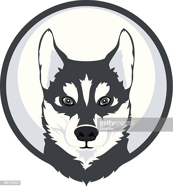 husky-Maskottchen