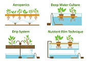 Hydroponic and aeroponic growth systems
