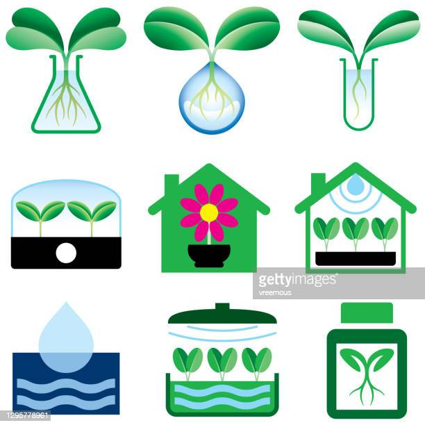 hydroponics and indoor gardening icons - cultivated stock illustrations