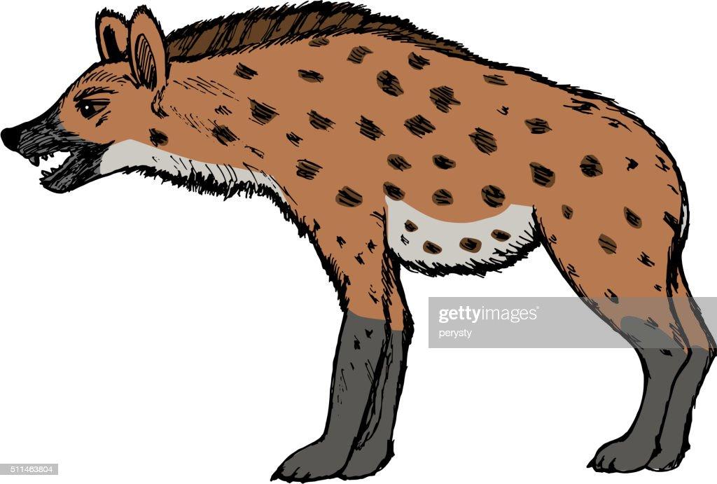 hyena, illustration of wildlife, zoo, wildlife, animal of savann