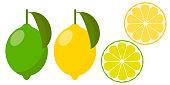 Icon lemon and lime, vector.