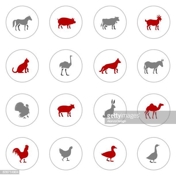 bildbanksillustrationer, clip art samt tecknat material och ikoner med icon set of farm animals - duck