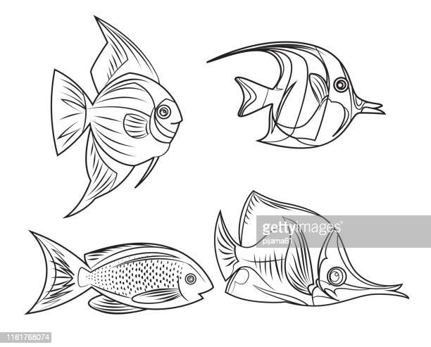 icon set with tropical fishes 2 - butterflyfish stock illustrations, clip art, cartoons, & icons