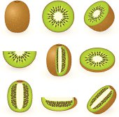 Icons of kiwi fruit in nine different partial sections