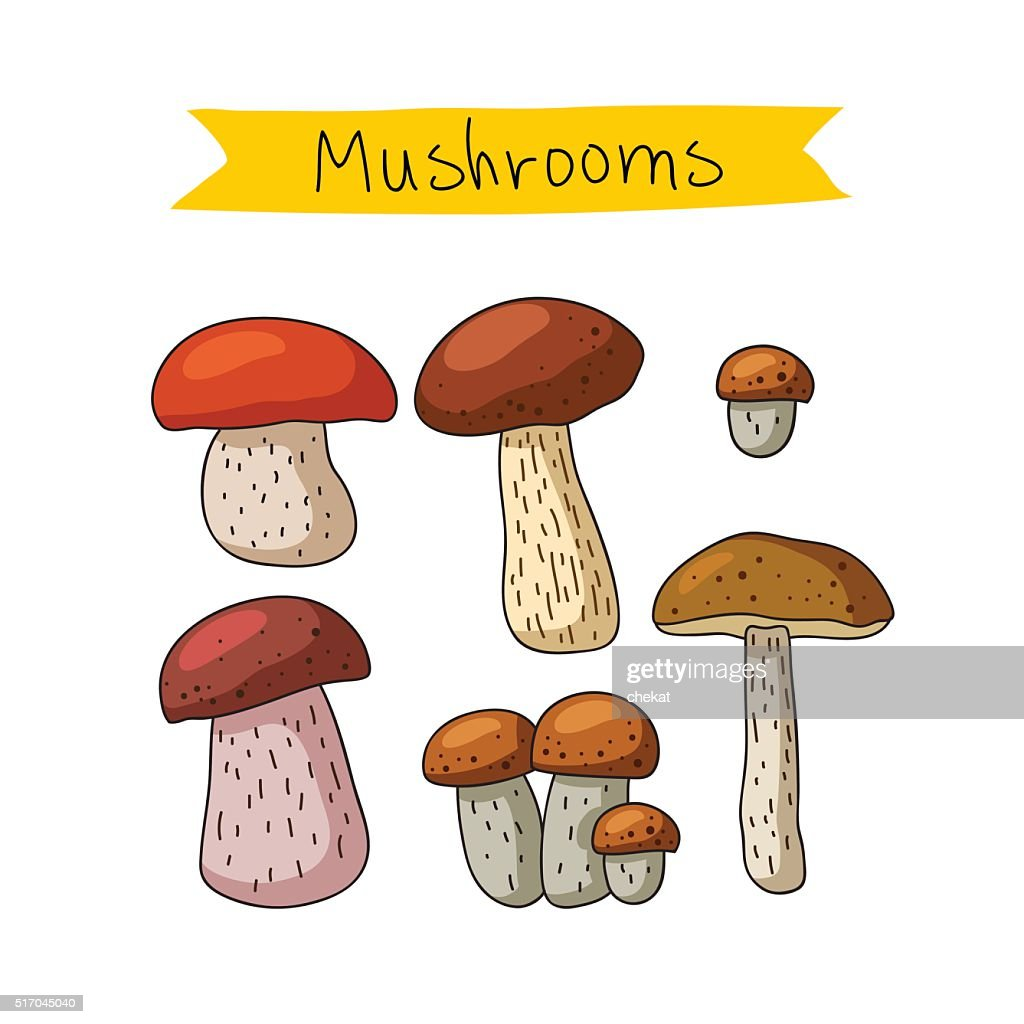 Icons of various mushrooms