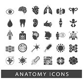 Icons presenting various organs and parts of the human body
