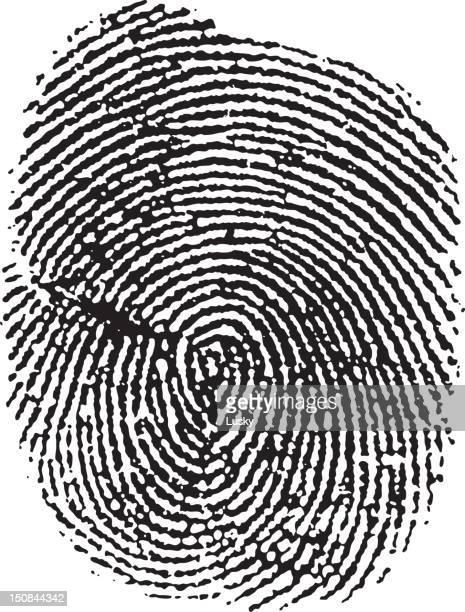 identity theft - crime scene stock illustrations, clip art, cartoons, & icons