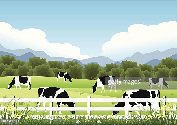 idyllic farm scene - pasture stock illustrations