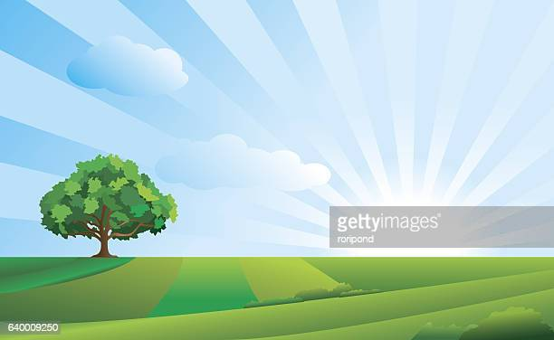 idyllic landscape - sky stock illustrations