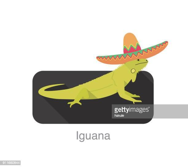 ilustraciones, imágenes clip art, dibujos animados e iconos de stock de iguana abrasador sombrero de paja de méxico, ilustración vectorial - iguana