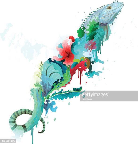 ilustraciones, imágenes clip art, dibujos animados e iconos de stock de vector de iguana - iguana