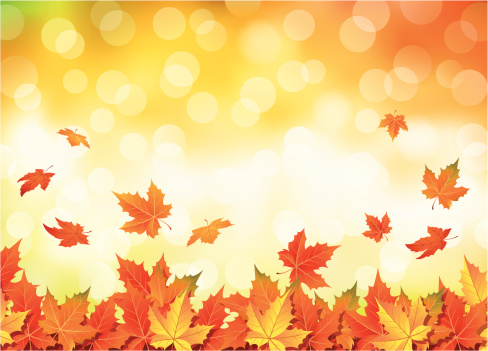 Illustrated autumn falling leaves background - gettyimageskorea