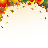 Illustrated Autumn Leaves Top Border Frame Background