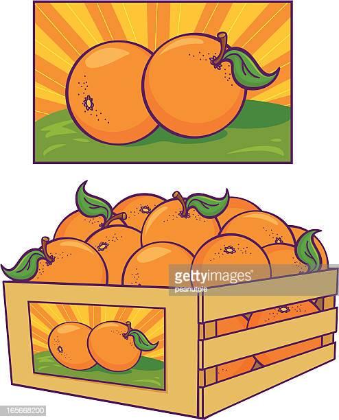 illustrated orange poster and orange crate - citrus fruit stock illustrations, clip art, cartoons, & icons