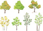 Illustrated set of various types of trees