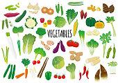 Illustrated set of vegetables