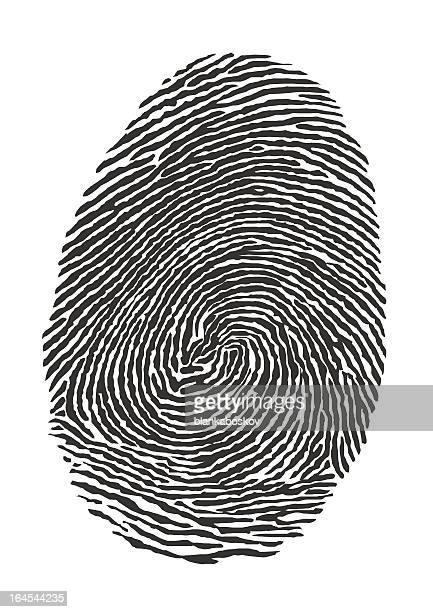 illustration fingerprint of a thumb - tracing stock illustrations