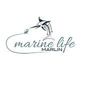 illustration marine life with marlin