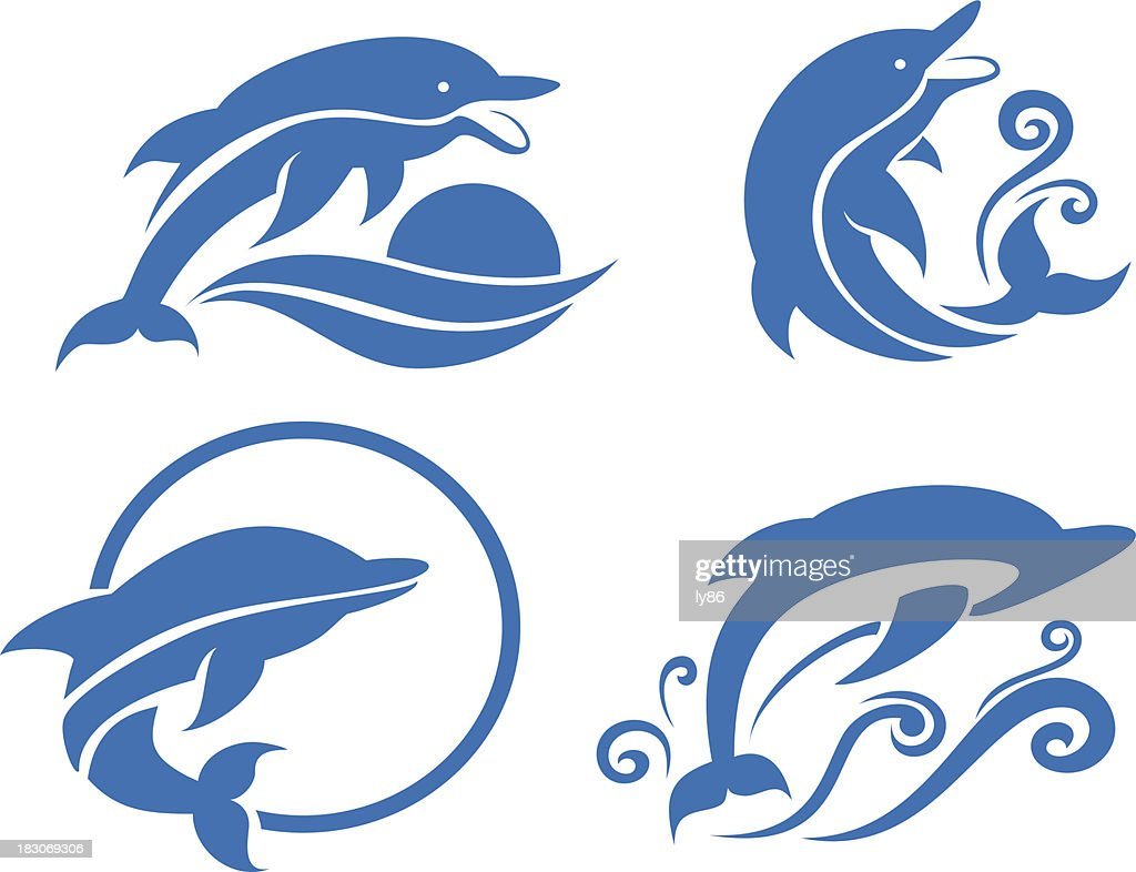 Illustration of 4 types of dolphin pictures