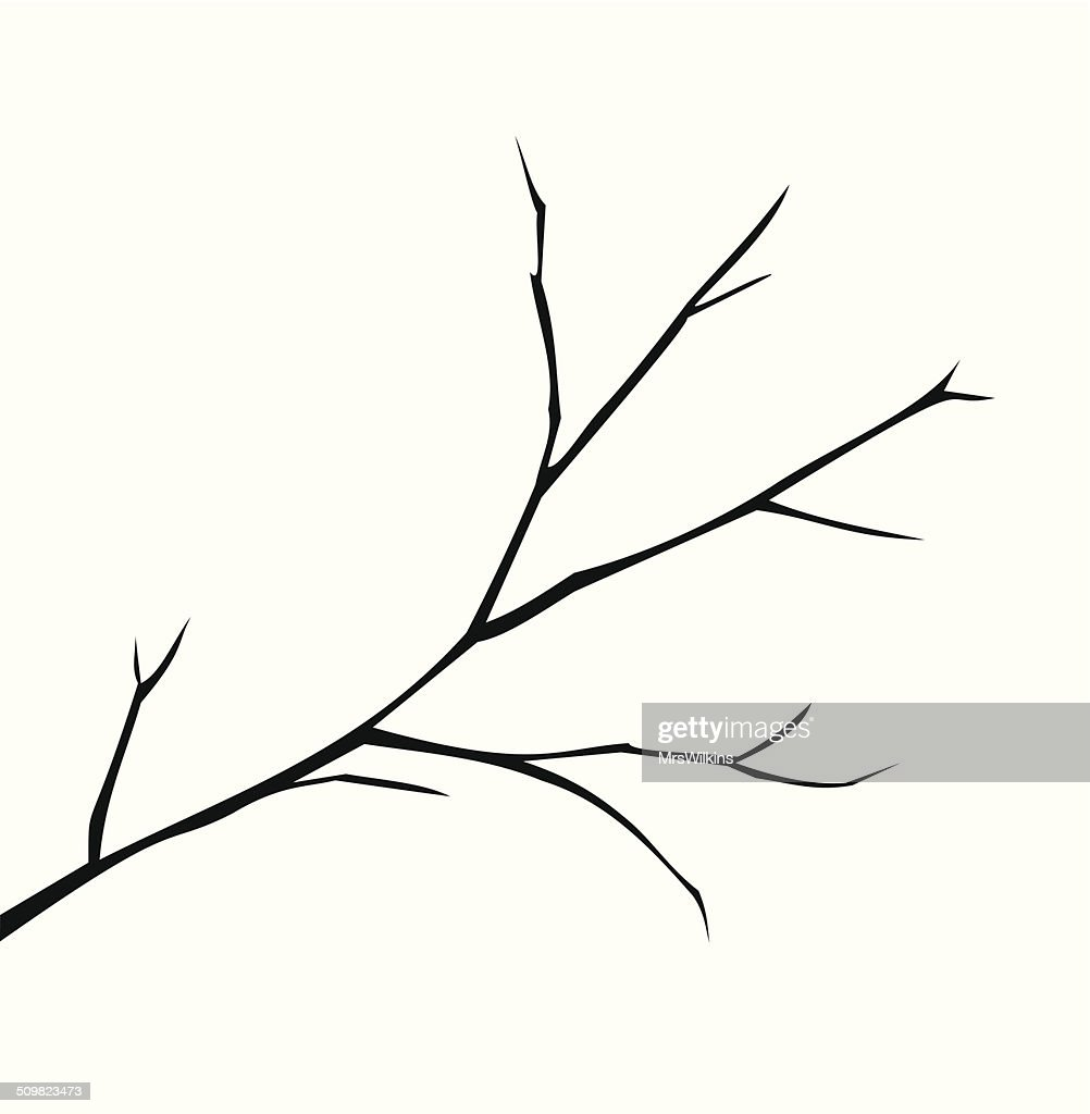 Illustration of a branch vector