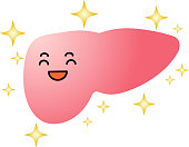 Illustration of a cute liver