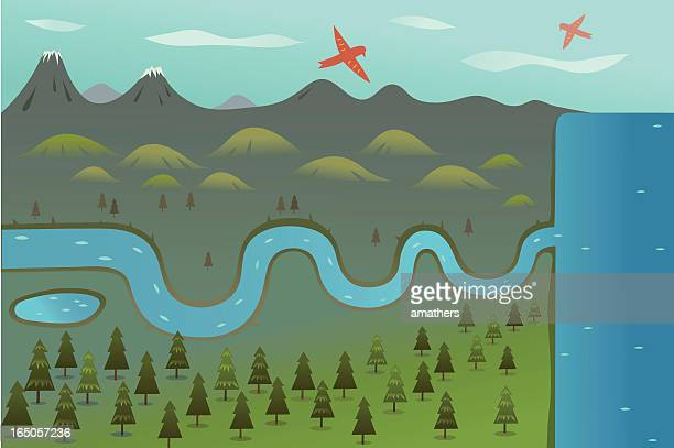 illustration of a river leading to a sea - forens stock illustrations