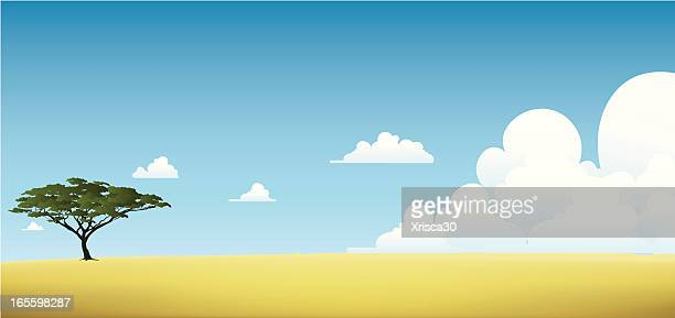 サファリの背景 - アカシア点のイラスト素材/クリップアート素材/マンガ素材/アイコン素材
