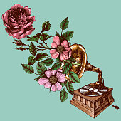Illustration of a vintage gramophone with roses.