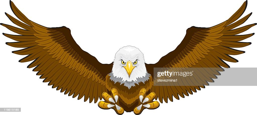 Illustration of an incoming bald eagle with talons ready