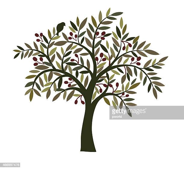オリーブの木。 - オリーブ点のイラスト素材/クリップアート素材/マンガ素材/アイコン素材