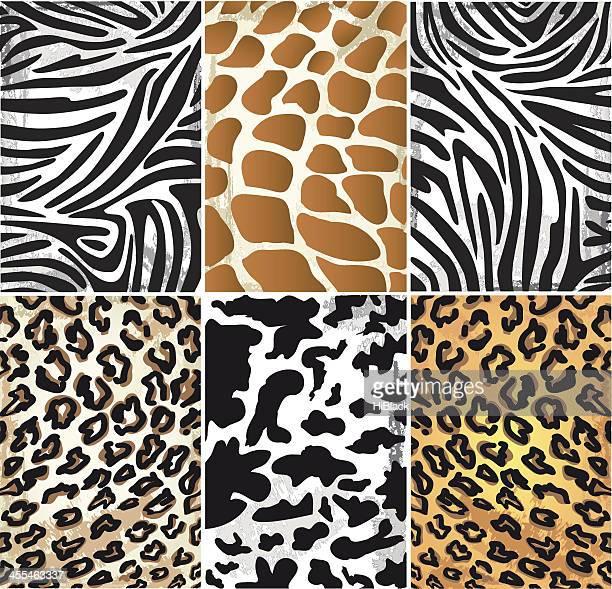 Illustration of Animal Skin Textures