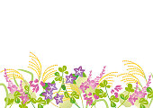 Illustration of autumn plants
