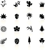Illustration of black botanic symbols