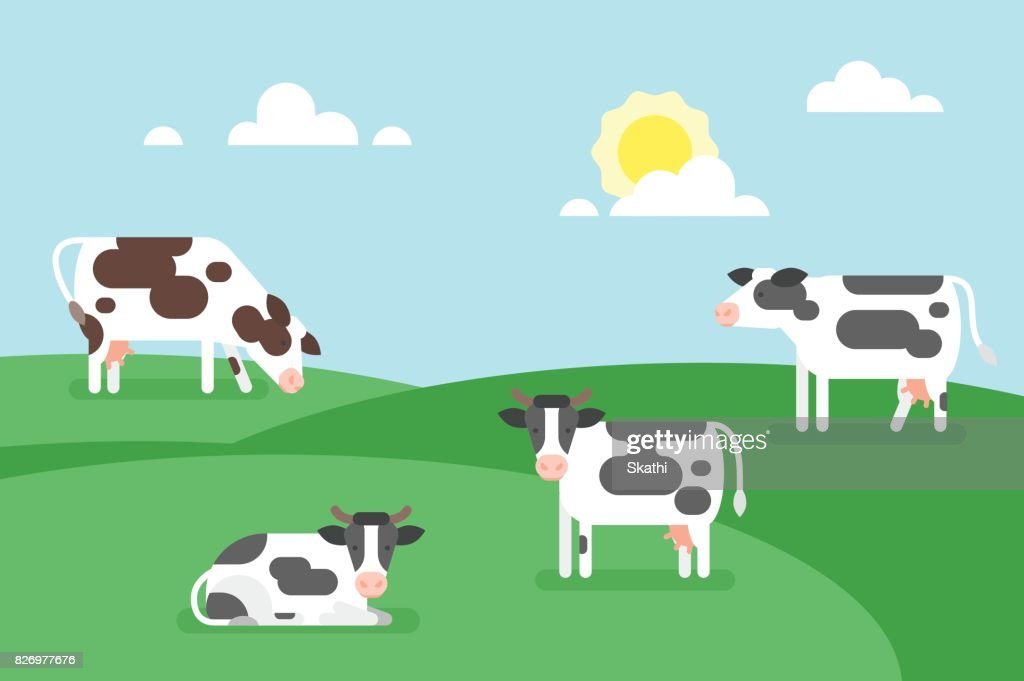illustration of cows graze in a field.