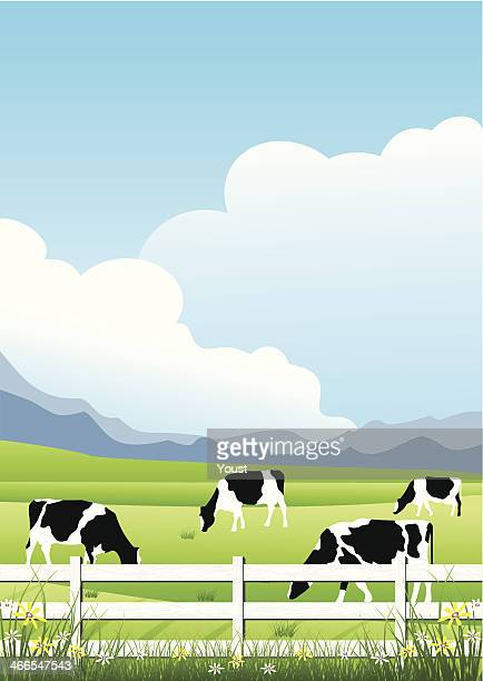 illustration of cows on a farm - cow stock illustrations