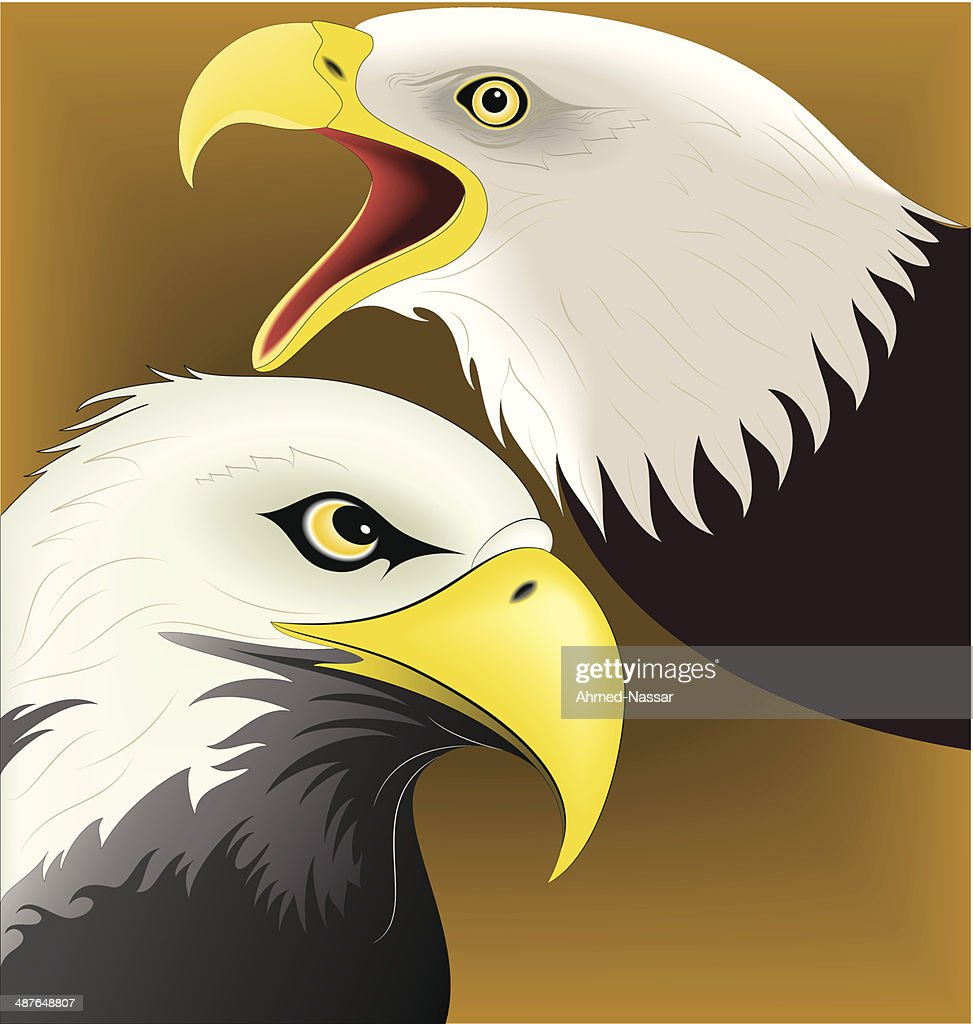 Illustration of Eagle
