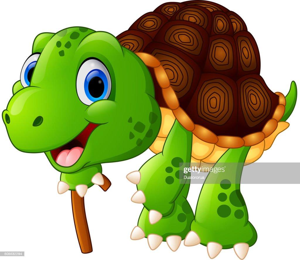 Illustration of elderly tortoise