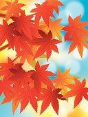 Illustration of foliage of Japanese style