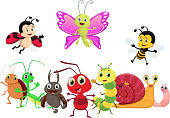 illustration of happy insect cartoon isolated on white background