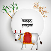 illustration of Indian festival Pongal background