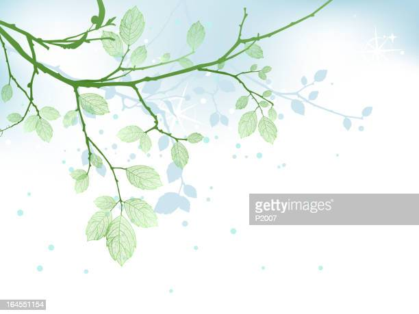 illustration of leafy branch and shadow - branch plant part stock illustrations, clip art, cartoons, & icons