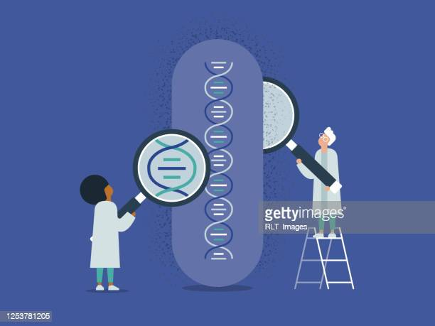 illustration of medical researchers studying dna - genetic modification stock illustrations